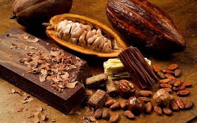 Ποιος έφερε την σοκολάτα στην Ευρώπη;